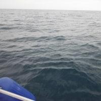6月24日 海は、凪に見えるけど…