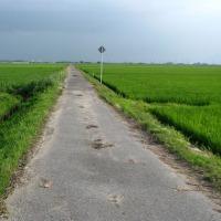 農道・緑の風・一人旅。