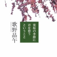 葉桜の季節に君を想うということ