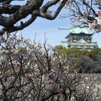 大阪城公園 (7)