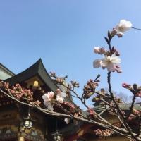 嬉野温泉ツアー2日目