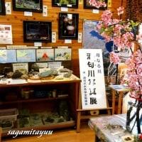 「第21回母なる川☆酒匂川写真展」を撮る!!