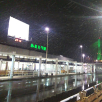 今年の冬の始りは津軽。。。