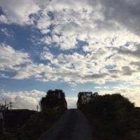 東の空は茜色だ