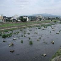 犀川の河川整備>犀川の河原の様子が変だ