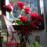シャンソン歌手リリ・レイLILI LEY  春の日差しの中のシャンソン稽古部屋