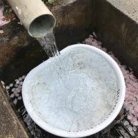田舎暮らしの醍醐味の一つは水の美味しさ