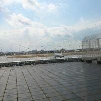 空港のANA場