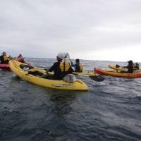 海上作業は休みでカヌーの練習を行う。