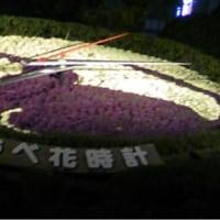 神戸の夜・花時計