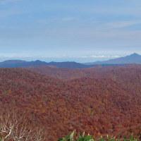 白神山系の秋