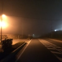 254日 TOEIC 夜練B山伏