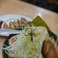 小林屋  ネギ味噌  餃子