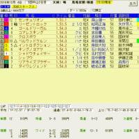 ステイヤーズステークス、北総ステークス、チャンピオンズカップ レース結果と予想の検証