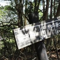 ㉓ 東中倉山~八世以山縦走登山 : 伏附峠へ  UP5日目