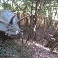 恐竜の探索 P4