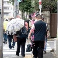 3652・日傘