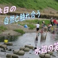 ナマズの赤ちゃん・・・6月後半~7月中頃、川の浅瀬がポイント、「ガサガサの達人」・・水辺の笑顔で!