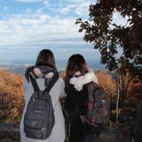 高尾山20161128