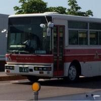 平日なのに撮りバス…
