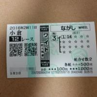 9/3(土)一応プラスに(汗)