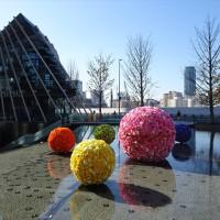「Floating Blossom」/グランフロント大阪