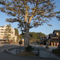 本屋親父のつぶやき11月30日 久々の上天気・金沢出張てした。