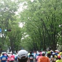 ハーフマラソン完走