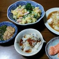 1月16日(月)自家製白菜のうま煮