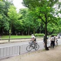 大阪城トライアスロン大会
