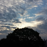 2015年11月15日主日礼拝説教マタイによる福音書14章1~12節