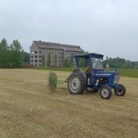 飼料作物ほ場の刈り取り実習をしました