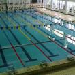 朝から水泳大会