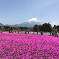 富士山Day