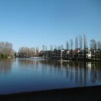 冬の別所沼公園