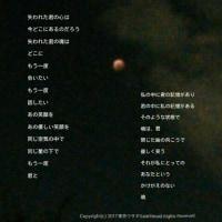 -雨の詩-24(魂はどこに)