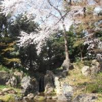 スポコミ・カワラ版 4月23日(日)大安