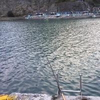 アジ釣りに出かける