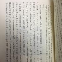 vol.3247 知識を捨てる魂が震える話より  写真はMさんからいただいたプレゼントですm╰(*´︶`*)╯あり...