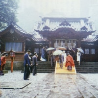 29日は昭和祭と九頭龍神社新宮例祭です。