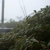 金剛山雨模様