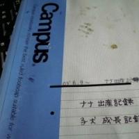 作業開始!!