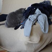 ◆洗濯物の隣で・・・◆