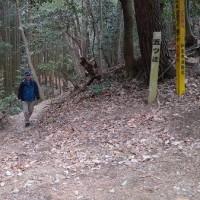 和泉の山歩きー鍛練 ≪合気道鴻心館登山部≫