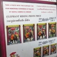 Thailand / Thailand Trip ( 12 )(タイ旅行)