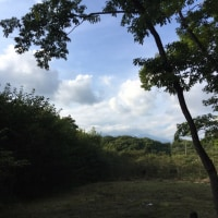 広谷地友愛の森付近