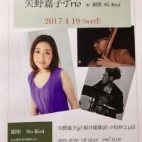 2017 4 19 矢野嘉子 Trio at 銀座No Bird
