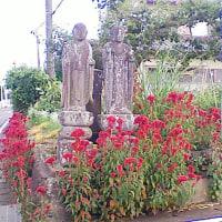 007足利市高松町、県道沿い地蔵隣の庚申塔(最寄り:多々良駅)