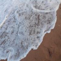 半月下の初秋の荒海(写真)