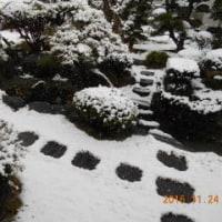 晩秋の雪<54年ぶり(昭和37年)以来>